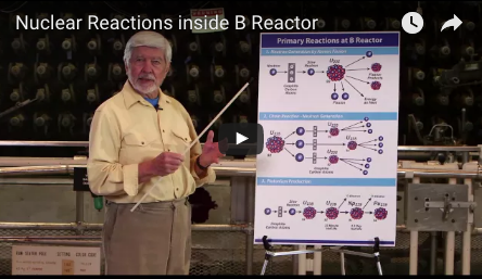 Primary Nuclear Reactions
